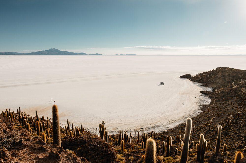Eine Insel in der Wüste von Felix Dorn