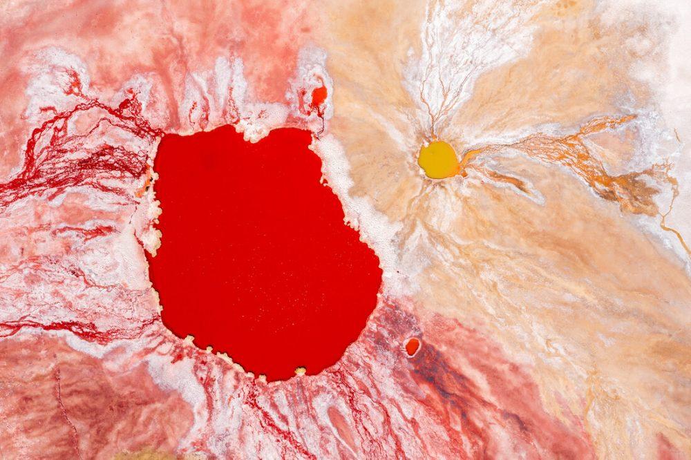 Bleeding planet von Felix Dorn