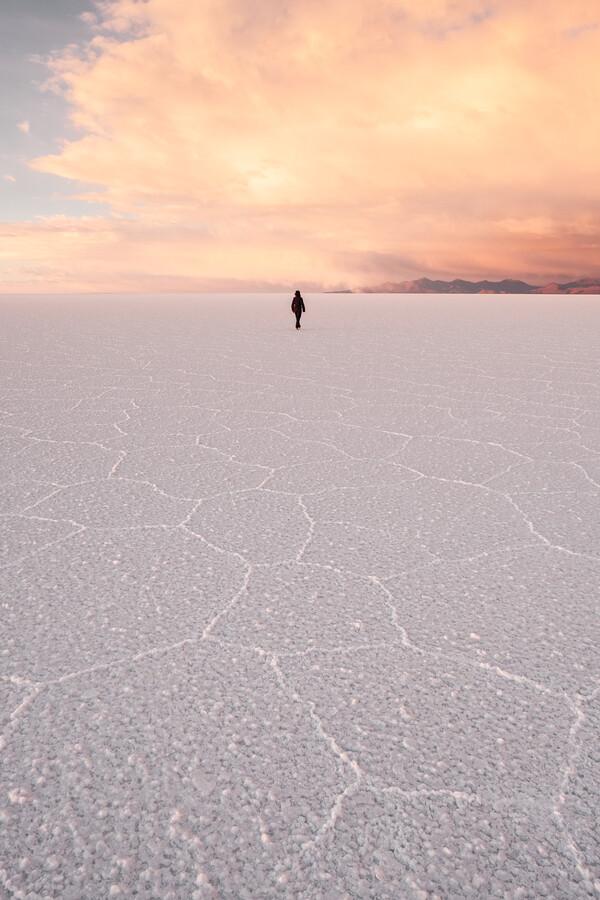 Salt Dream von Felix Dorn