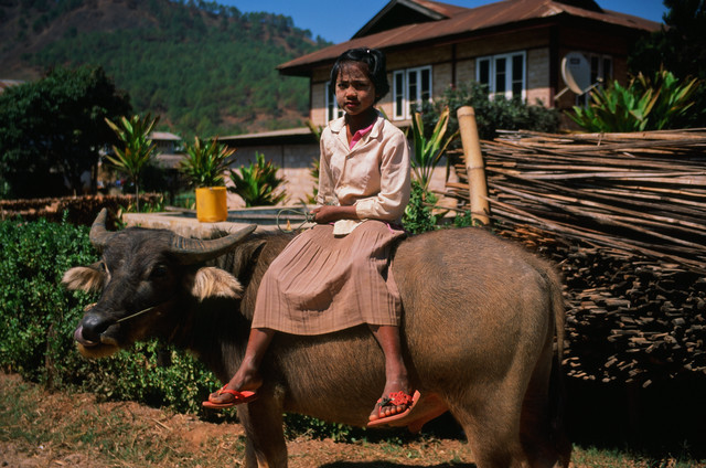 Myanmar Kalaw by Jim Delcid