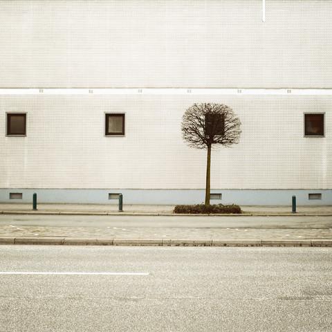 URBAN LANDSCAPING von David Foster Nass