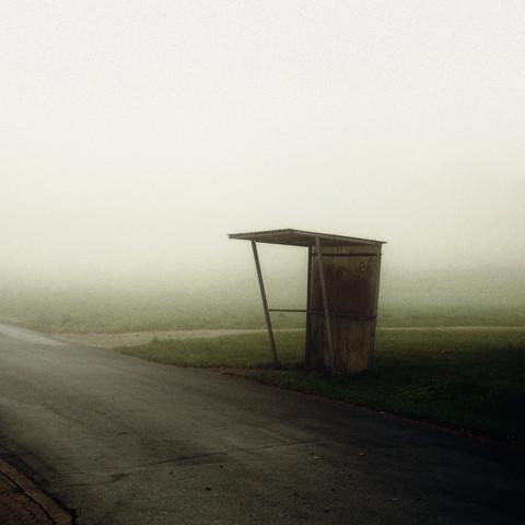SHELTER von David Foster Nass