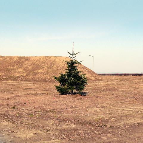 CHRISTMAS ON MARS von David Foster Nass